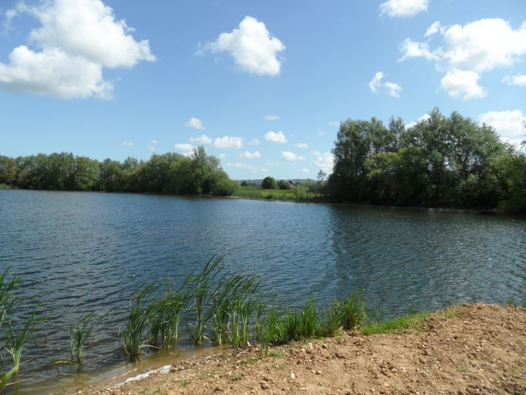 conningbrook-lakes